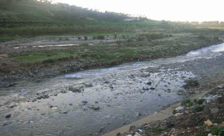 غسل الخضر بمياه وادي شراعة ببركان يؤثرعلى السلامة الصحية للمستهلكين