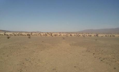 تفويت وعاء عقاري ببلدية سيدي سليمان شراعة بركان والسعيدية يثير جدلا واسعا