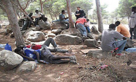 إخلاء غابة غوروغورو من المهاجرين السريين بالقرب من الناظور