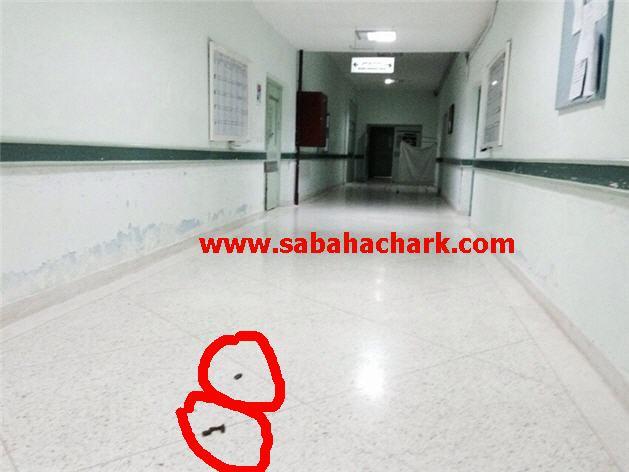 farabi (2)