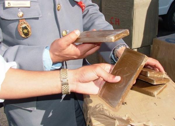 الدرك الملكي …حجز أزيد من 400 كلغ من مخدر الشيرا بين أحفير و السعيدية إقليم بركان
