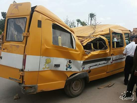 نجاة 9 تلاميذ مدرسة من الموت بعد سقوط شجرة على حافلة ببركان