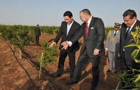 عزيز أخنوش: مخطط المغرب الأخضر ساهم في خلق دينامية إنتاجية على مستوى قطاع الفلاحة