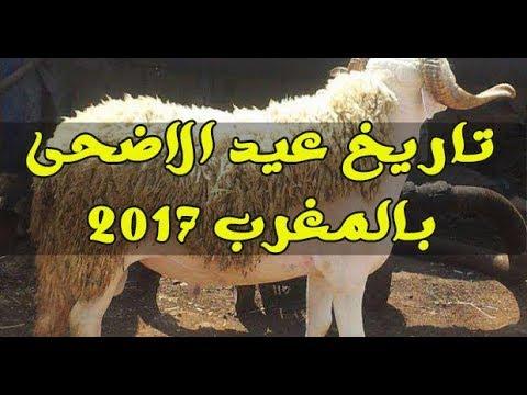 رسميا..هذا هو تاريخ عيد الأضحى بالمغرب