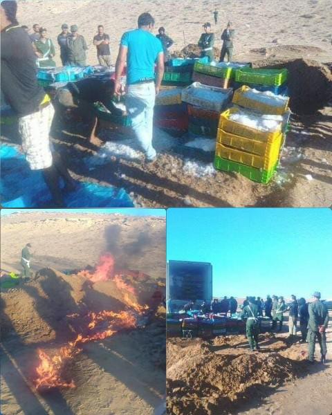 إتلاف ما يقارب 500 صندوق من سمك الأخطبوط المهرب بمدينة طرفاية