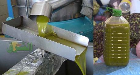 مركز التميز لزيت الزيتون  يتوقع تمركز المغرب في مراتب متقدمة من حيث إنتاج زيت الزيتون موسم 2020-2021