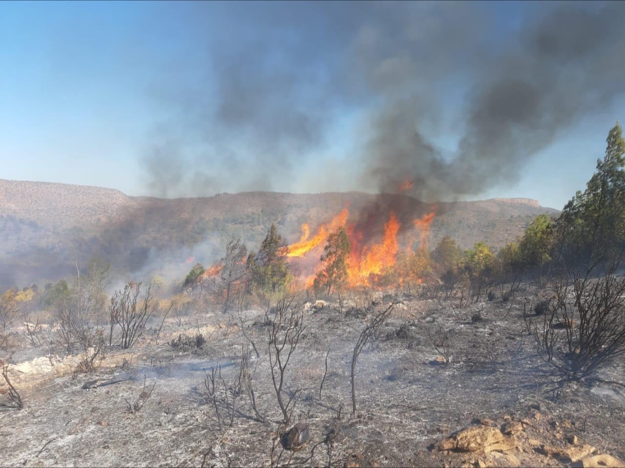 نشوب حريق على مساحة 3 هكتار للمرة الثانية في ظروف غامضة
