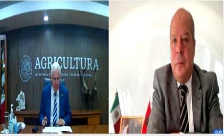 المكسيك ترغب في تعزيز شراكتها مع المغرب في القطاع الفلاحي