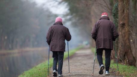 دراسة حديثة المشي قد يحسن من صحة الدماغ والتفكير لدى كبار السن