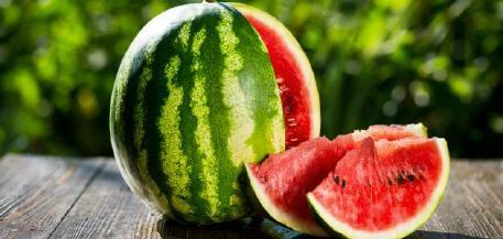الأونسا تكشف حقيقة استخدام بذور معدلة جينيا لزراعة البطيخ الأحمر